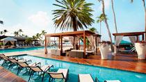 Barnvänliga hotell Divi Aruba All Inclusive.