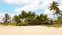 Rundresa i Dominikanska republiken.