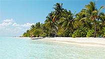 Maldiverna
