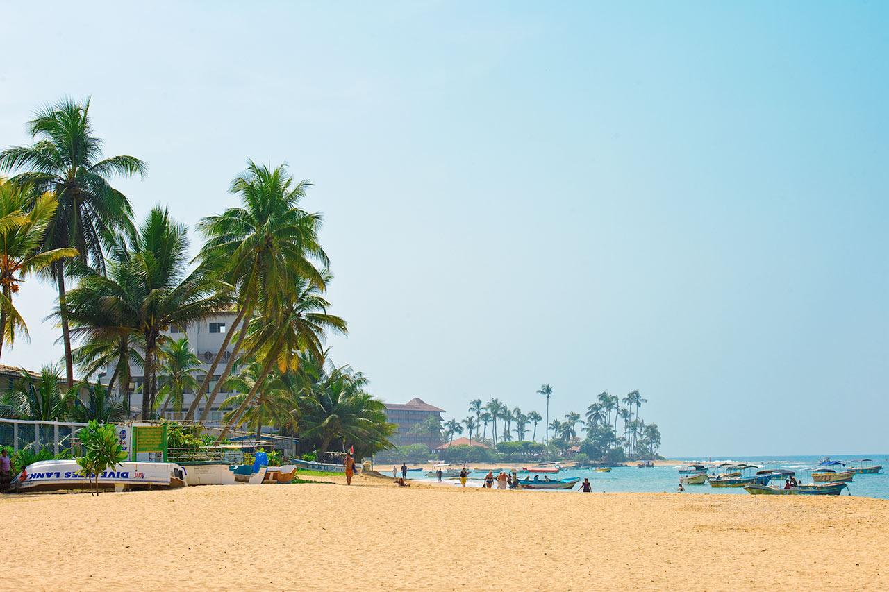 Sri Lanka - Bilder hos Ving