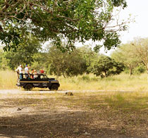 Rundresa Senegal - 8 dagar.