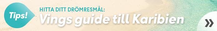 Hitta ditt drömresmål med Vings karibienguide