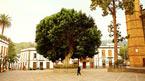 Las Palmas & Guayadeque